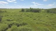 CU AERIAL LA Shot of Over scrub and grass at Sheyenne National Grassland / North Dakota, United States