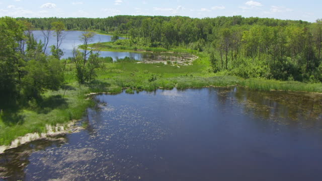 MS AERIAL LA Shot of Over trees and small lakes at Turtle Mountain State Forest / North Dakota, United States