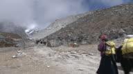 MS Shot of People and Yaks walking in Khumbu Glacier on way to Everest Basecamp / Thokla, Khumbu Region, Nepal