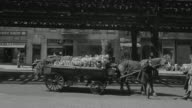 WS Shot of people buying flower from horse cart vendor and shops at back