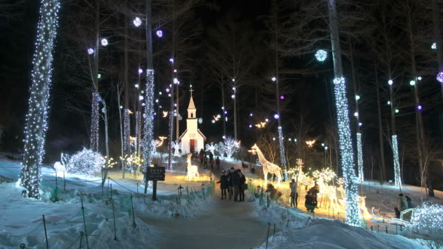 MS T/L Shot of People roaming and enjoying at Gapyeong Achimgoyo Arboretum on christmas holiday at night / Gapyeong, Kyonggi-Do Province, South Korea