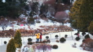 MS T/L Shot of People roaming and enjoying at Gapyeong Achimgoyo Arboretum on christmas holiday / Gapyeong, Kyonggi-Do Province, South Korea