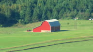 MS AERIAL Shot of picturesque red barn on farm in Iosco County / Michigan, United State