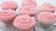 CU TU TD Shot of pink iced cupcakes / London, United Kingdom