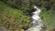 MS Shot of river in jungle / Campo Novo do Parecis, Mato Grossso, Brazil