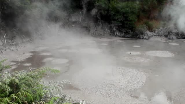 MS Shot of Rotorua gush springs / Rotorua, New Zealand