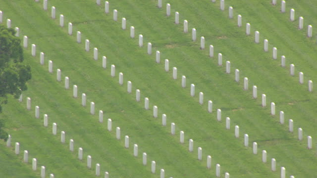 MS AERIAL Shot of Rows of headstones at Jefferson Barracks Cemetery / St Louis, Missouri, United States