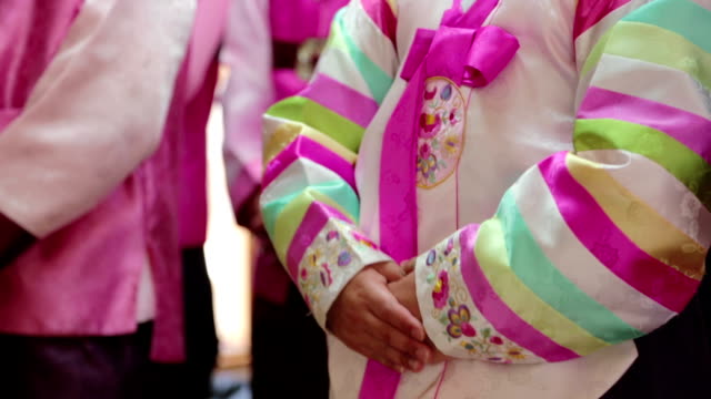 Shot of Saekdongjeogori which is a kind of Hanbok that is korean traditional clothing