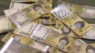 MS Shot of Scene of disfigured 50,000 won bank note / Seoul, Seoul, South Korea