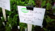CU SLO MO Shot of Signs at Farmer's Market / Chatham, Michigan, United States