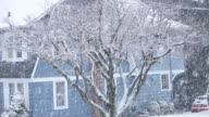 MS PAN Shot of snow falling on trees and rural home / High Bridge, New Jersey, United States