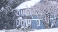 MS ZI Shot of snow falling on trees and rural home  / High Bridge, New Jersey, United States