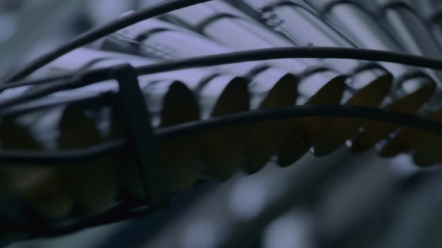 CU Shot of Steel cans running through conveyor rail