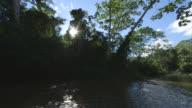MS POV Shot of sun shines through trees as boat going down Amazon river / Peru