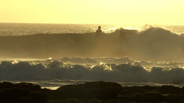 MS TS Shot of Surfer surfing at sunset, Port Elizabeth / Eastern Cape, South Africa
