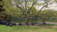 Shot of The lake in Central Park, NYC on a sunny day. People walk along a path and sit in the grass
