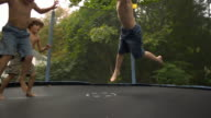 WS SLO MO shot of three Caucasian male children on trampoline, being bounced and falling across camera, getting up and bouncing / Stanford, Connecticut, United States