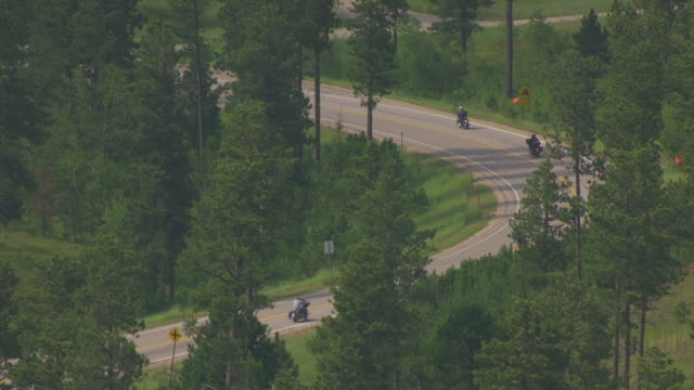 MS AERIAL Shot of through trees of bikers driving curves on highway 170 away / Sturgis, South Dakota, United States