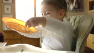 MS Shot of Toddler in high chair dumps plate of peas / Chelsea, Michigan, United States