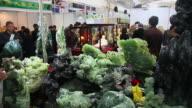 MS Shot of Various jade article at trade shows / Xi'an, shaanxi, China