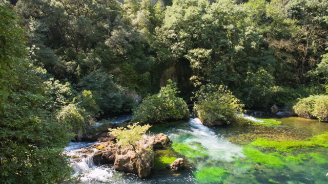 MS Shot of water flowing in River Sorgue with vegetation around / Fontaine de Vaucluse, Vaucluse, France