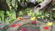 CU Shot of water is flowing at Yosen temple / Fukuchiyama, Kyoto, Japan