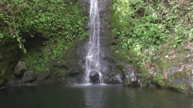 MS TD Shot of waterfall to bottom as it hits rocks / Hawaii, United States
