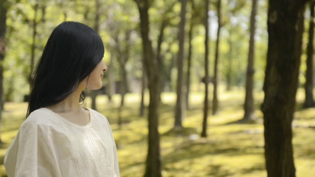 MS Shot of Woman is standing in nature and smile / Uji, Kyoto, Japan