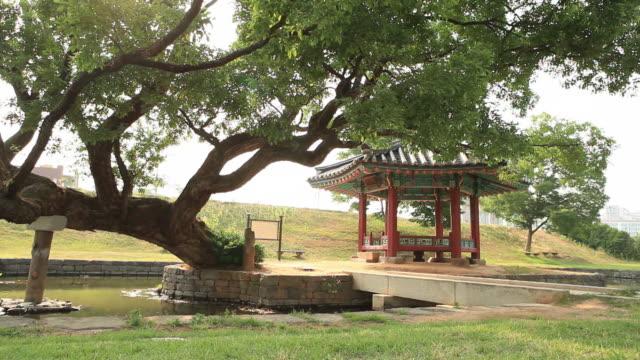 Shot of Yeohajeong gazebo and a old tree