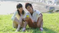 MS Shot of young couple watching smart phone together in park / Kamakura, Kanagawa, Japan