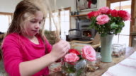 MS Shot of young girl making flower arrangements in her home / Lamy, New Mexico, United States