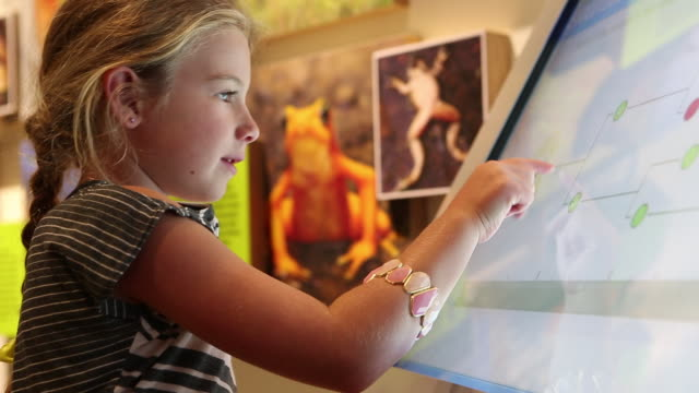 MS TU Shot of young girl using touchscreen at museum / Dallas, Texas, United States