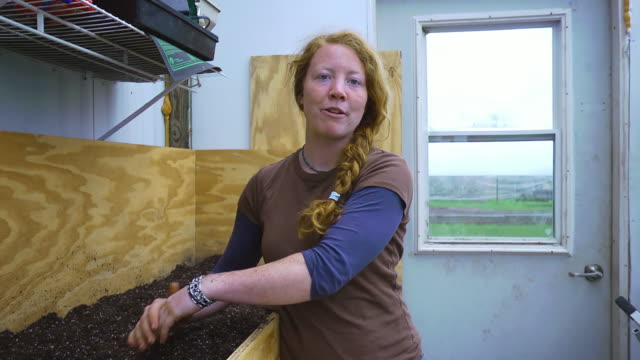 MS SLO MO Shot of young red hair woman in green house, with soil on her hands / Chatham, Michigan, United States
