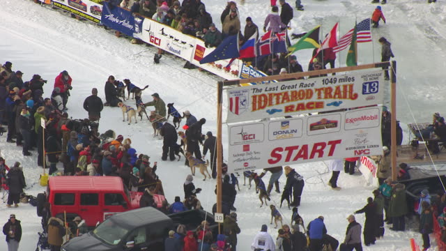 MS AERIAL Shot over musher and dog team at Iditarod Trail Sled Dog Race start line / Willow, Alaska, United States