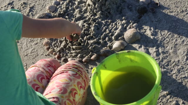 CU Shot over young girl playing with sand and seashells on beach / St Simon's Island, Georgia, United States