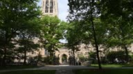 Shots in the area of Yale University referred to as the Old Campus in New Haven CT shot June 12 2015 Shots Wide shots of the top of Harkness Tower...