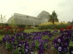 Shots of the Palm House in Kew Gardens