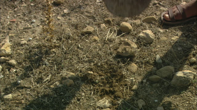 A shovel breaks ground near the ruins of Oudna Amphitheater in Tunisia.