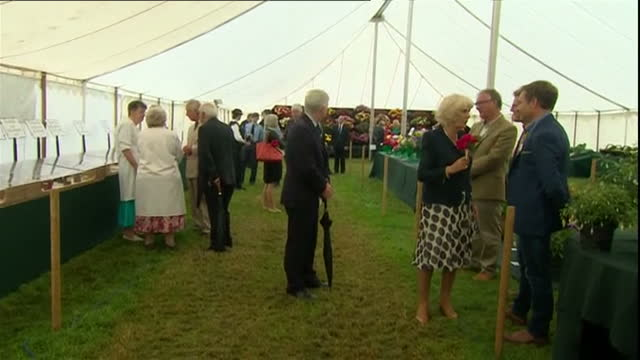 Shows interior shots Prince Charles Prince of Wales and Camilla Duchess of Cornwall talking to flower show officials in tent at Sandringham Flower...