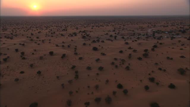 Shrubs dot the Kalahari Desert in Botswana. Available in HD.