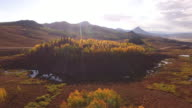 Side Flight Aspen Tree Reveal, Aerial, 4K, 29s, 20of34, Aspen Trees, Foliage, Mountains, Beautiful Colors, Changing leaves, Colorado, Aerial, Stock Video Sale - Drone Discoveries 4K Nature/Wildlife/Weather Drone aerial video
