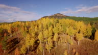 Side flight Aspen Trees, Aerial, 4K, 13s, 17of34, Aspen Trees, Foliage, Mountains, Beautiful Colors, Changing leaves, Colorado, Aerial, Stock Video Sale - Drone Discoveries 4K Nature/Wildlife/Weather Drone aerial video