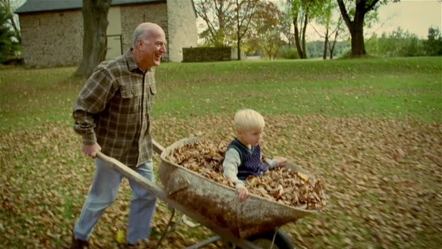 MS, TS, side view, senior man pushing grandson (4-5 years) in wheelbarrow filled with autumn leaves, USA, Pennsylvania, Solebury