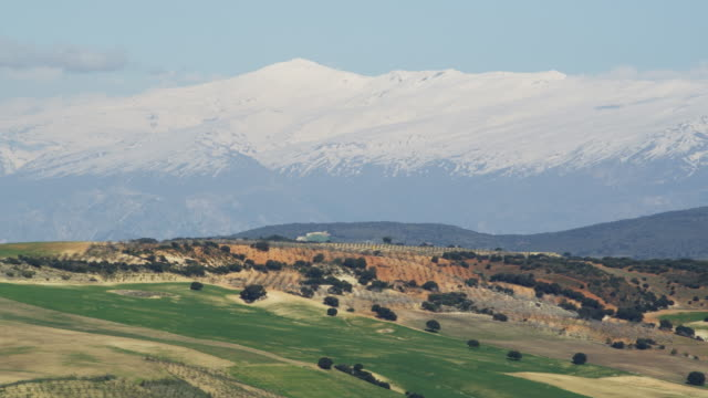 WS PAN Sierra Nevada mountain range and highest peak is Mulhacen behind green fields and olive groves / Alhama, Andalusia, Malaga, Spain