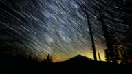 Silhouette of Fir Trees and Snag with Mt. Hood and Milky Way Abstract Star Trails Night Time Lapse