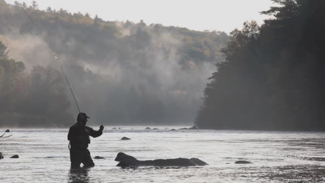 WS TD TU Silhouette of fly-fisherman fishing in river / The Forks, Maine, USA
