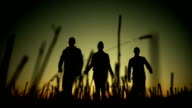 Silhouette of three friends walking