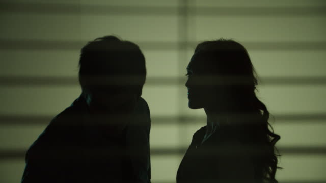 Silhouette of Woman Slapping Man