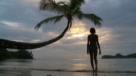 WS Silhouette of woman wading in ocean at sunset / Seychelles