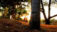 Silhouette Menschen Training in einem park bei Sonnenuntergang